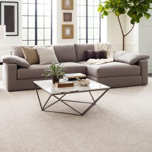 Modern living room with Carpet flooring | Country Manor Decorating